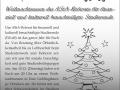 Fikus Weihnachtsessen